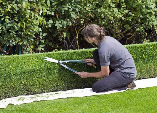 bon jardinier paysagiste